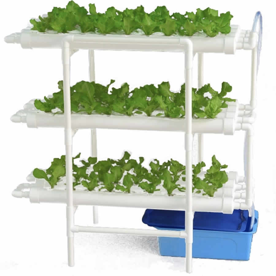 buy nft grow kit