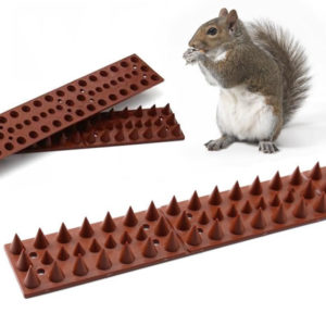squirrel spikes