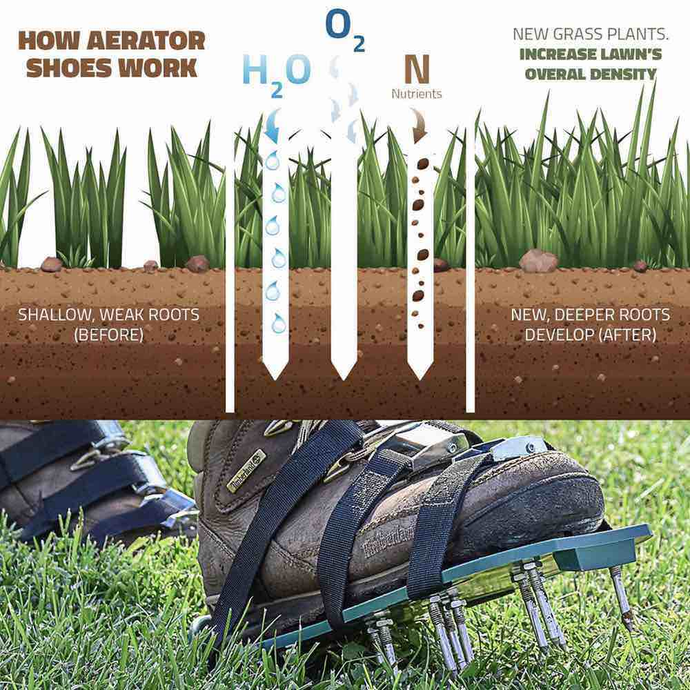aerator shoes lawn