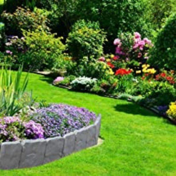 buy garden decorative border edging